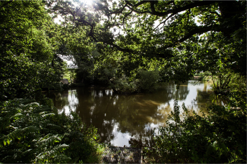Fisherman's Holiday | Cheshire Country Holidays